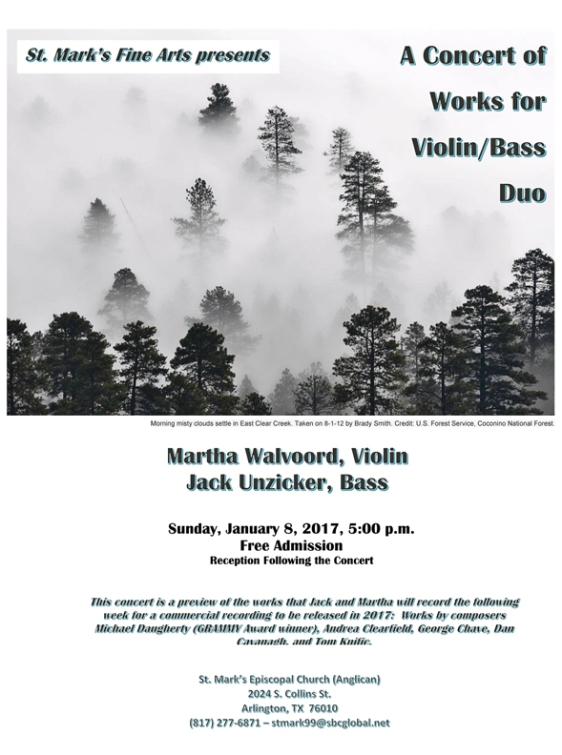 violinbassconcert